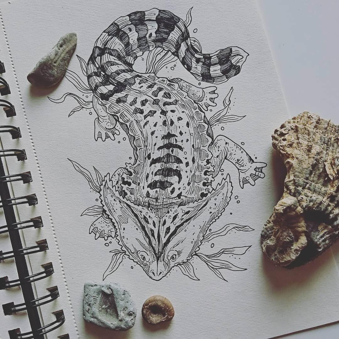 12-Diplocaulus-Weronika-Kolinska-Black-and-White-Animal-Ink-Drawings-www-designstack-co