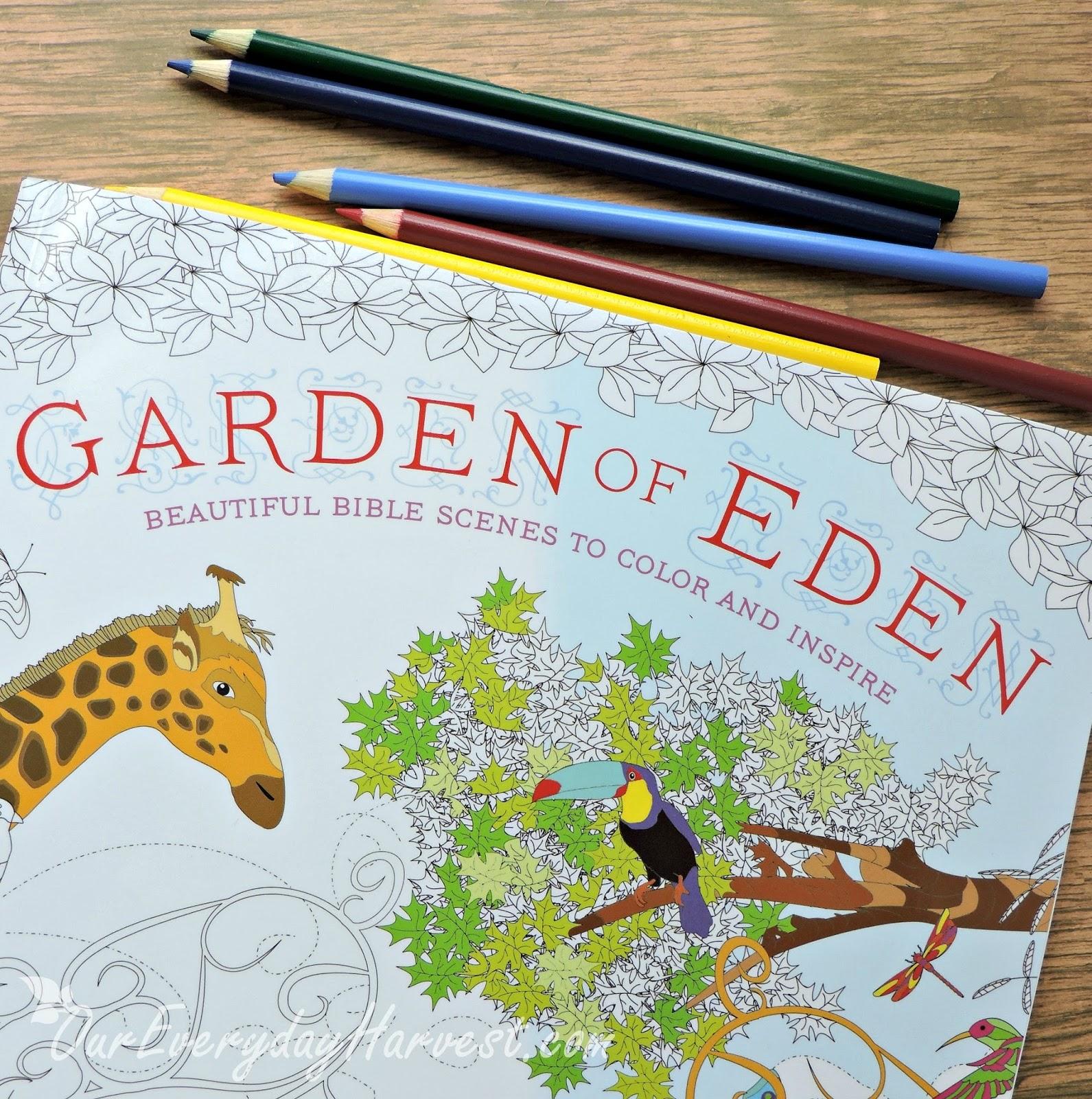 Garden of Eden Adult Coloring Book {Beautiful Bible Scenes to Color ...