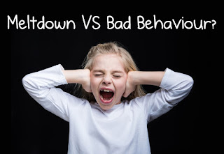 Girl looks angry and covers her ears with her hands. Text reads Meltdown verses Bad Behaviour?