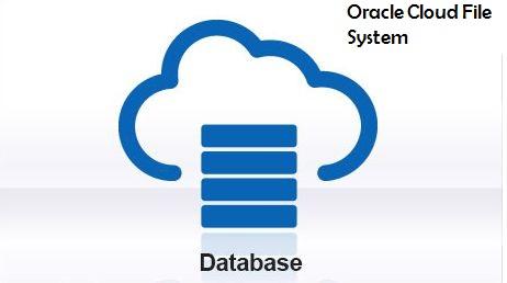 Netsoftmate Technical Blog : Oracle Database Appliance - Resize ACFS
