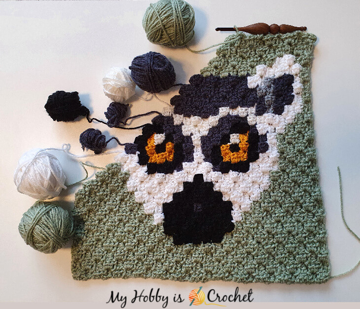 Lemur C2C Square- work in progress