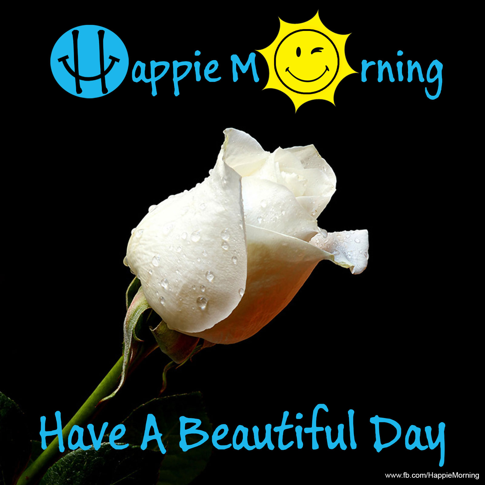 Happie Morning Have A Beautiful Day Happie Morning Start Your