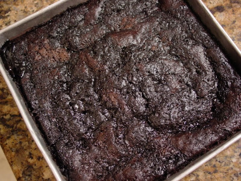 Vegan Hot Fudge Pudding Cake