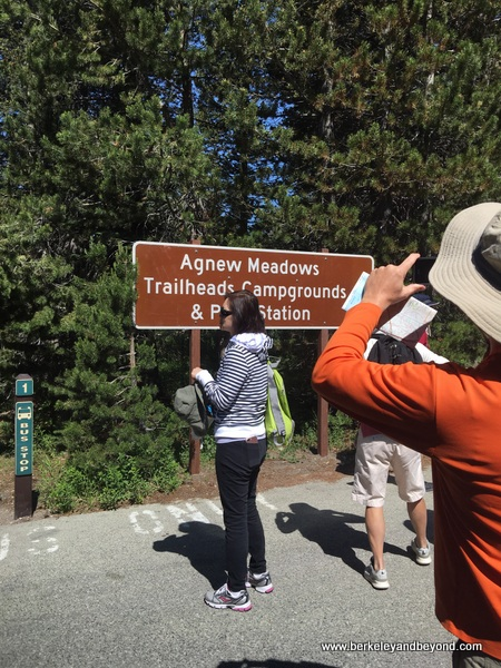 Agnew Meadows shuttle stop at Devils Postpile National Monument in Mammoth Lakes, California