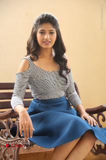 Telugu Actress Roshini Prakash Stills Short Dress at Saptagiri Express Release Press Meet  0162.JPG