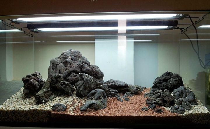 đá Phan Thiết trong một bố cục thủy sinh