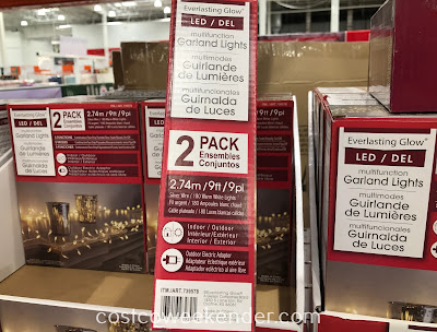 Costco 739578 - Mini Multifunction Garland LED Lights: great for the holidays