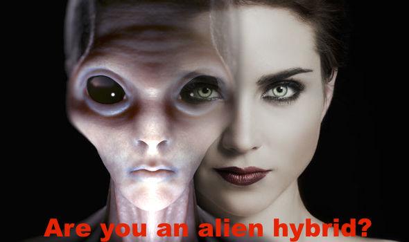 Bildergebnis für human hybrid pictures