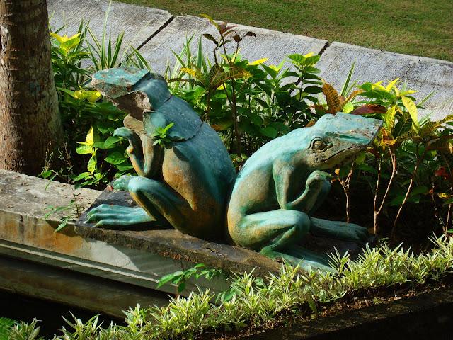 Изображение двух лягушек у пруда