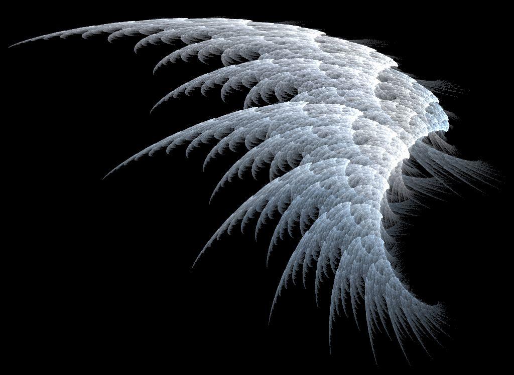 Apa begini sayap malaikat?