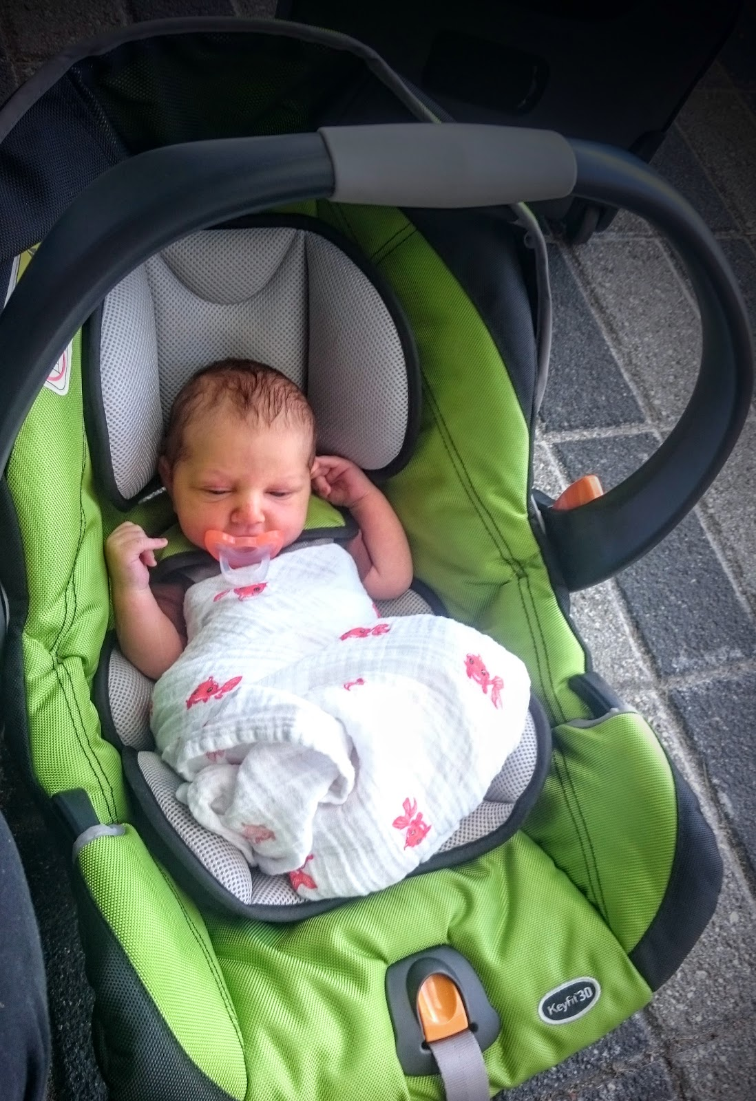 Picking an infant car seat as a city family | Kids in the ...