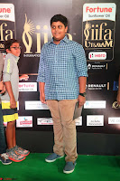 Celebrities sizzling Exclusive Pics at IIFA Utsavam Awards 2017  Day 2  HD Exclusive 46.JPG