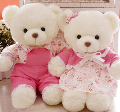 Teddy-Bear-wedding-lovers-doll