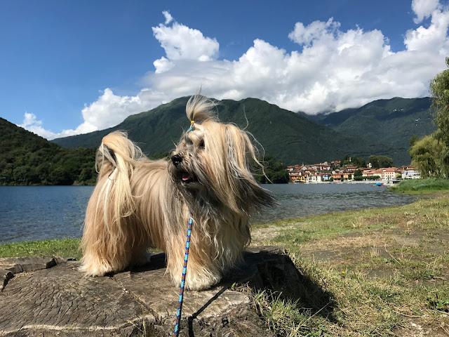 Lago di Mergozzo northern Italy lake