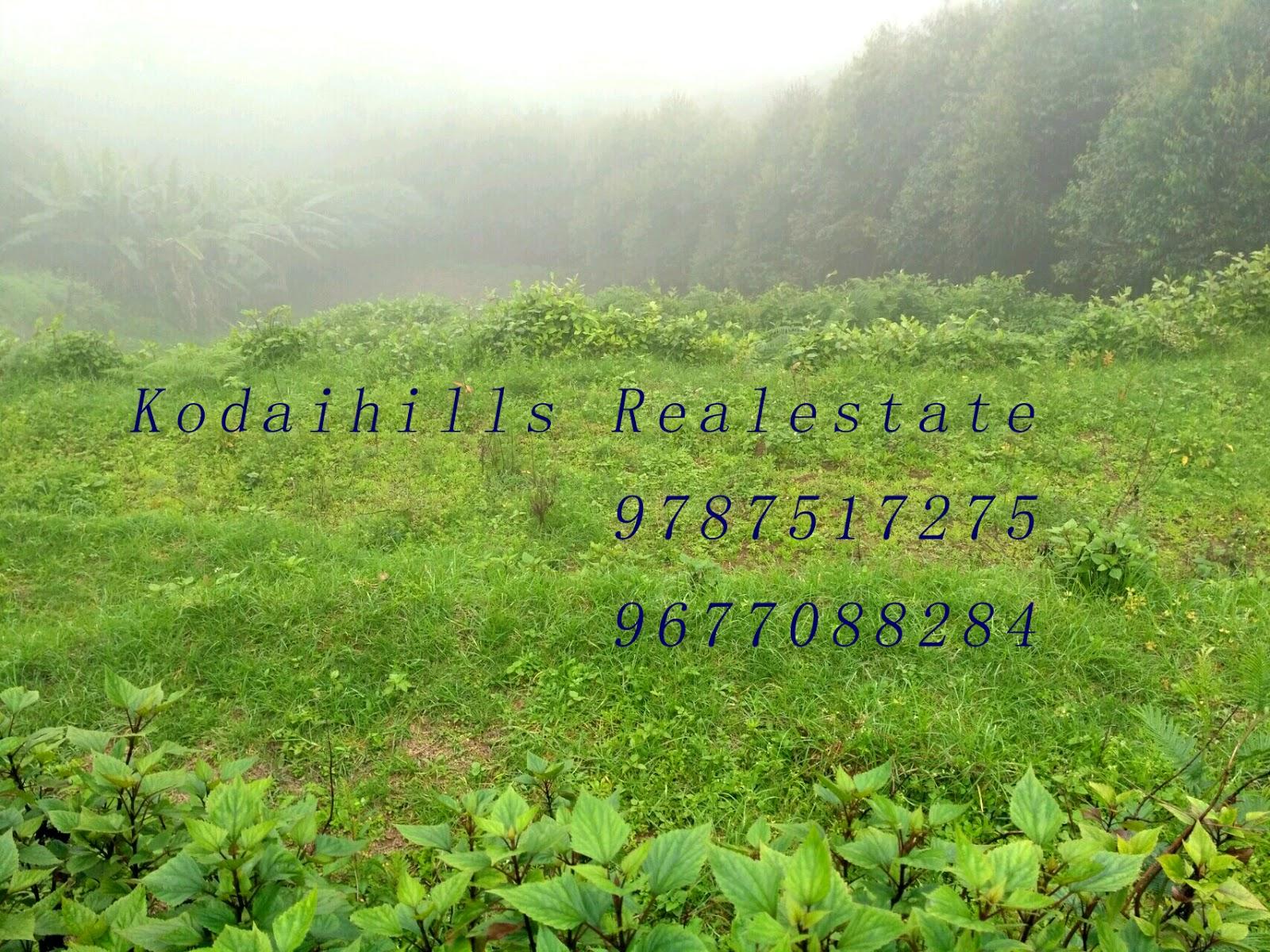 5 Acre agriculture land for sale in kodaikanal mountain range