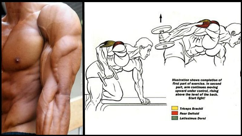 Best Exercise To Build Up Triceps