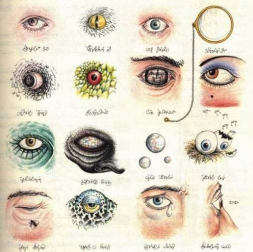 Eye - Misteri Manuskrip Kuno Codex of Seraphinianus