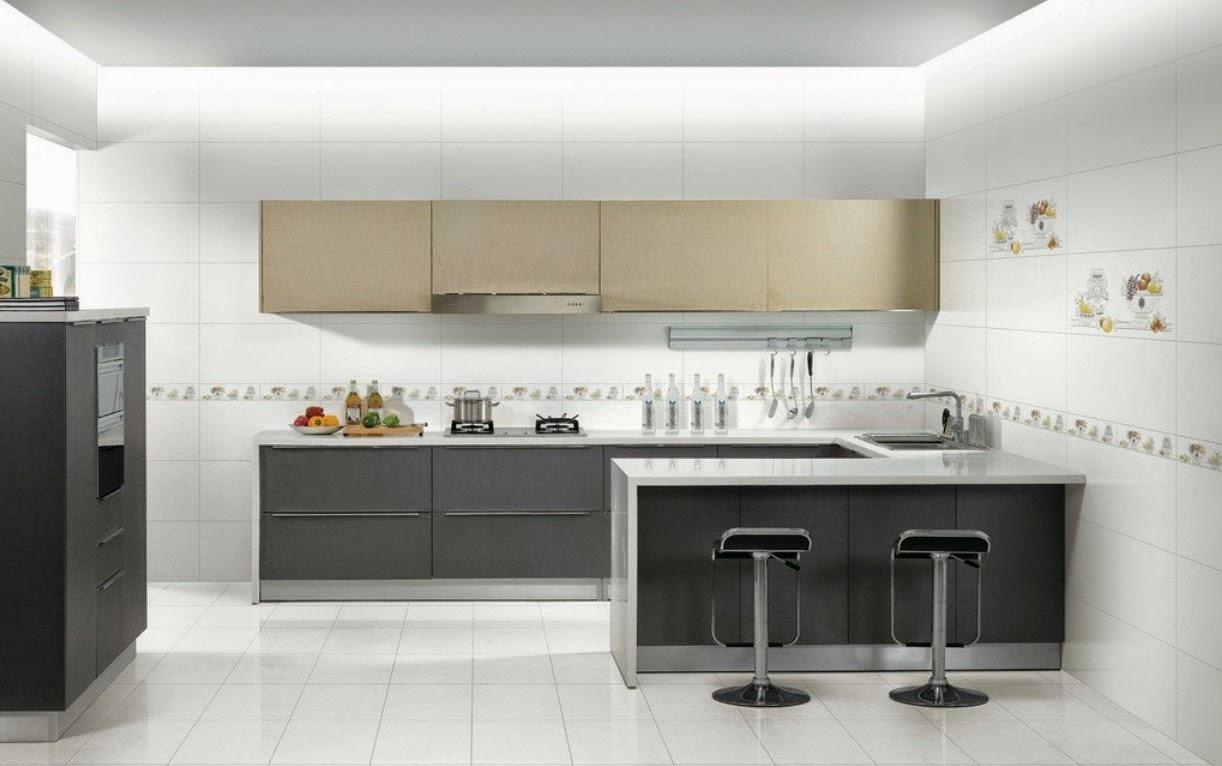 kitchen designing ideas 2014 - freshnist design
