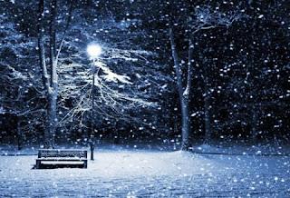 Cảm âm bài hát người tình mùa đông