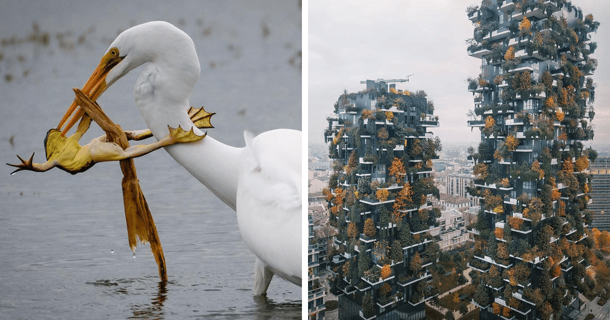 30 Mind-Blowing Photographs From The National Geographic Instagram Photography Contest