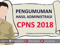 Resmi !! Pengumuman Hasil Seleksi Administrasi CPNS 2018, Cek di Sini