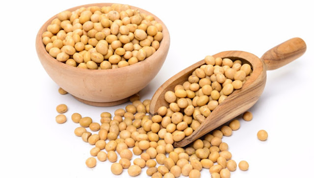 Good Sources Of Protein - Soy