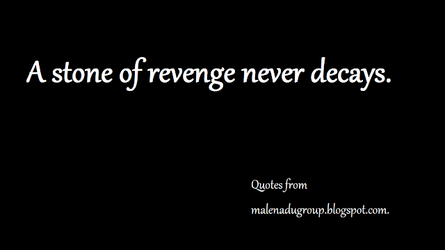thoughts on revenge