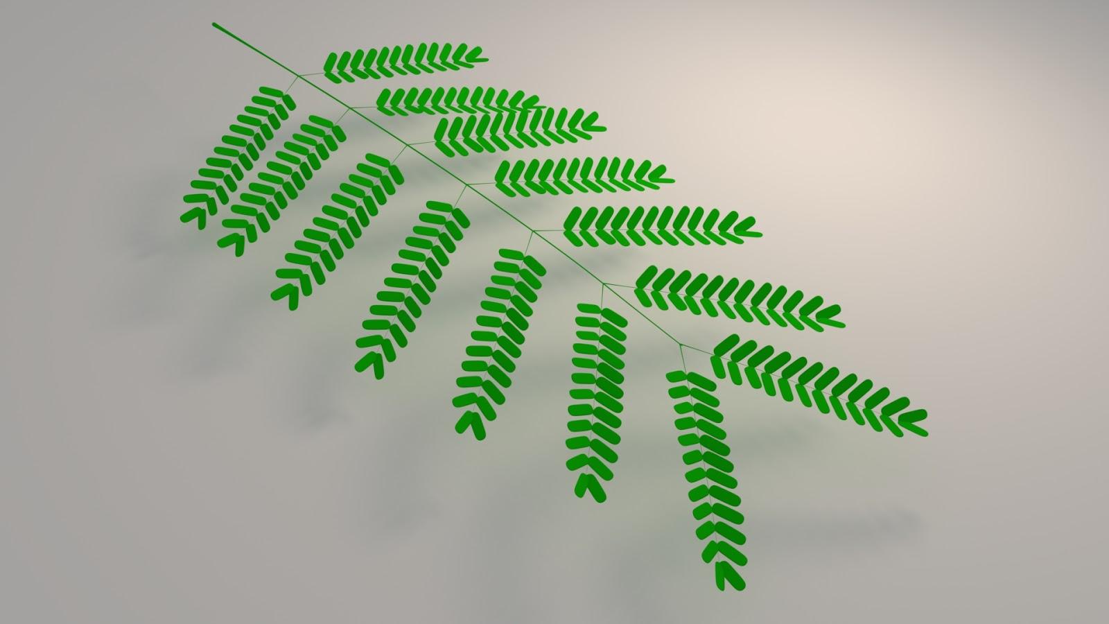 Free 3D Leucaena Leucocephala Leaf .blend file