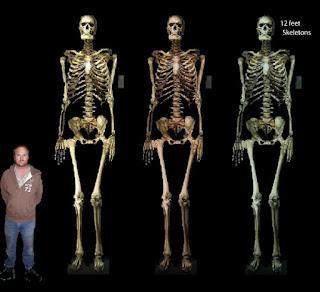 Esqueletos humanos gigantes