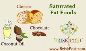 Saturated fat foods illustration (Bad Fat Foods): Cheese, chocolate, coconut oil
