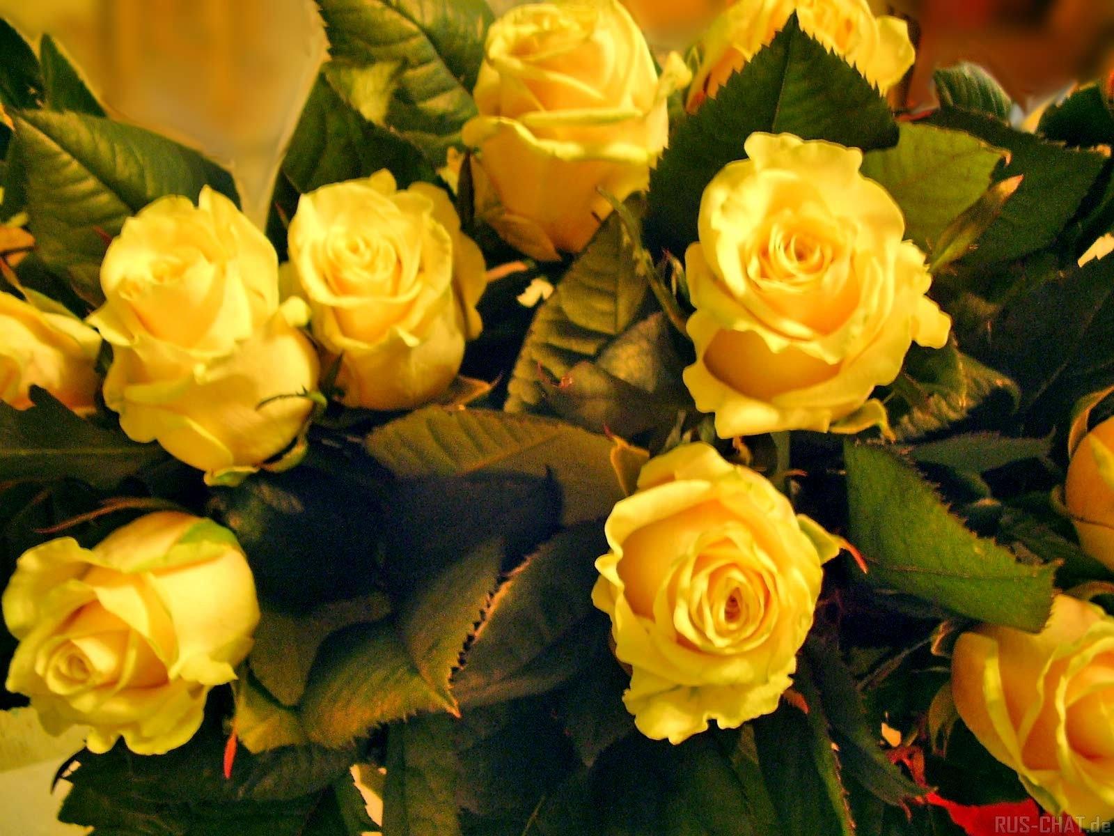 качестве букет желтых роз фото анимационные валу ротора
