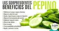 https://steviaven.blogspot.com/2018/02/conozca-las-grandiosas-propiedades-pepino-salud-contraindicaciones.html