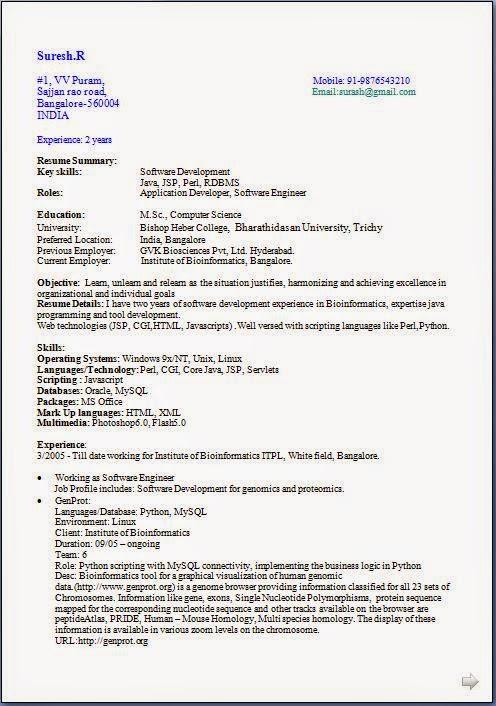 bioinformatics resume webdesignlondon co