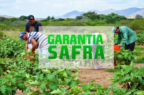 Garantia Safra é liberado para Morada Nova e Quixeramobim
