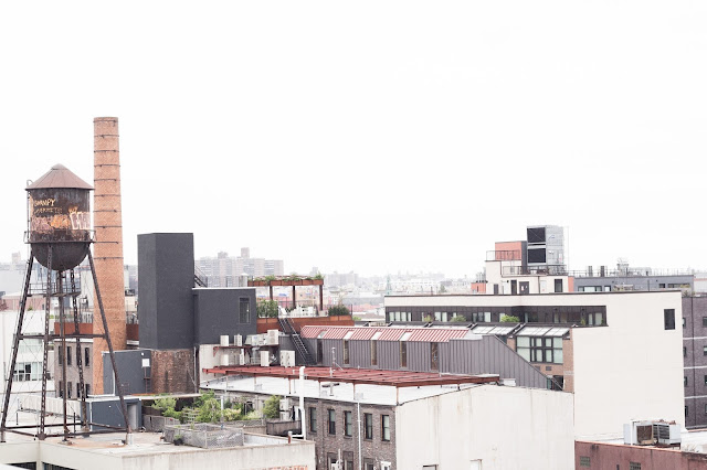 rooftops de brooklyn