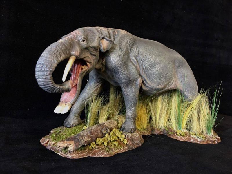 Platybelodon - Wikipedia