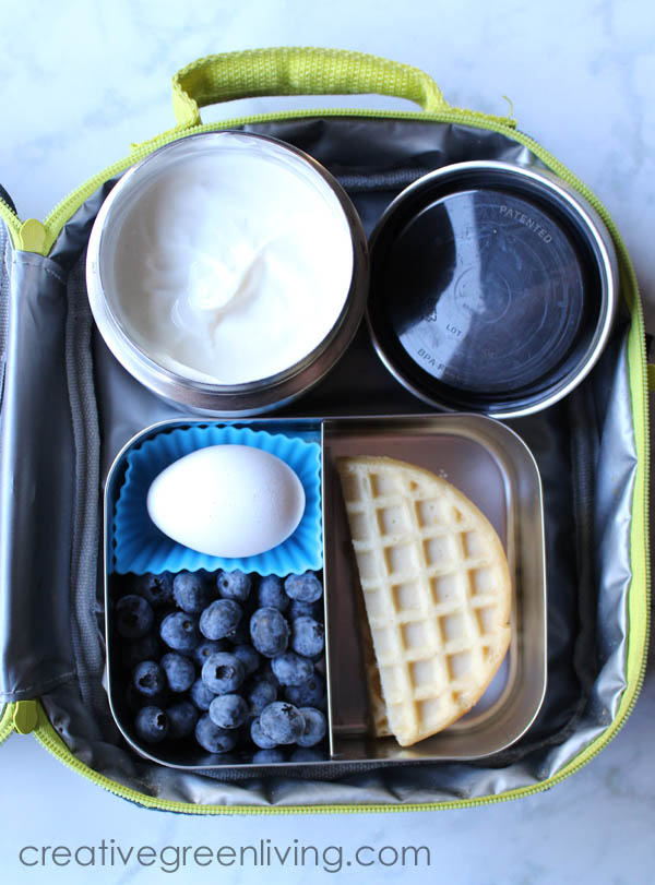 Breakfast inspired bento box lunch with waffles, blueberries and Wallaby yogurt