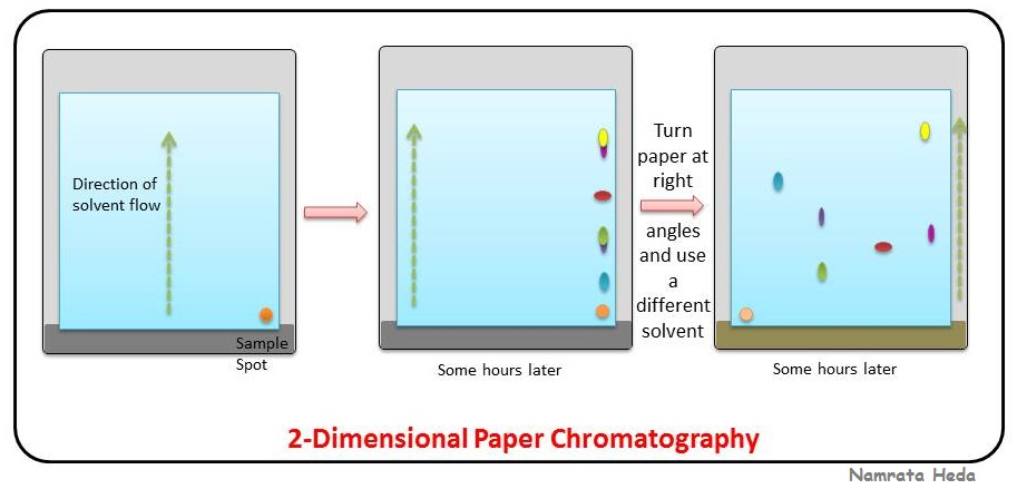 paper chromatography Separations: chromatography of m&m and ink dyes almost all substances we come into contact with on a daily basis are impure that is, they are.