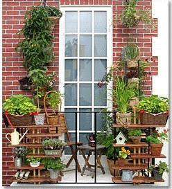 Balkonlardaki Çiçekler için Öneriler