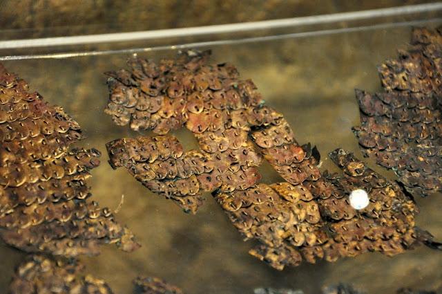 rzymskie artefakty z Czech, wystawione na zamku w Mikulovie, zbroja łuskowa