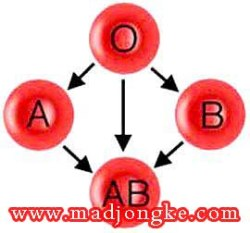 karir berdasarkan golongan darah A B AB O