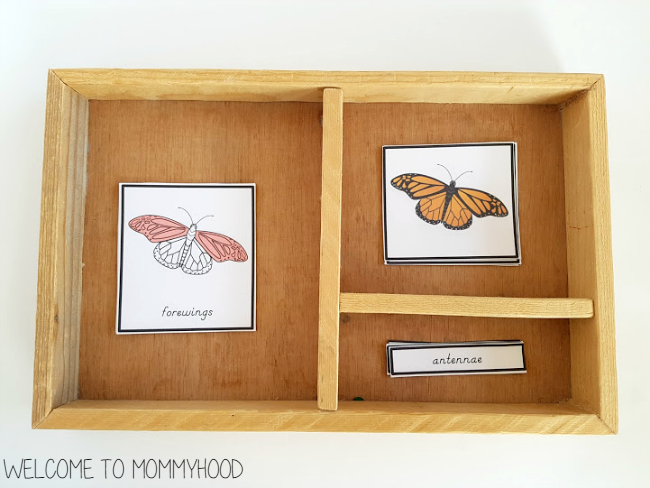 How to choose the perfect Montessori tray by Welcome to Mommyhood #montessori, #montessorihome, #preschool,