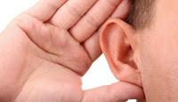 obat herbal untuk menyembuhkan syaraf telinga rusak