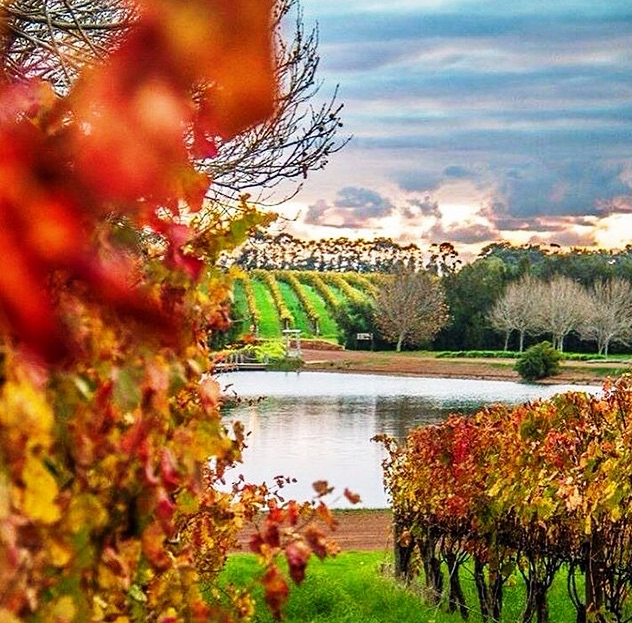Rich Colors of Margaret River in Autumn