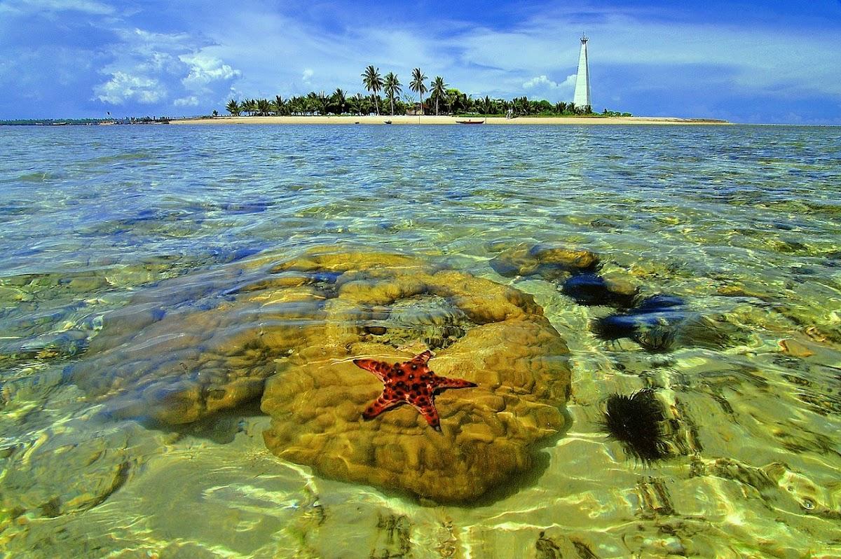 Pulau Beras - Tempat Wisata Di Kalimantan Timur