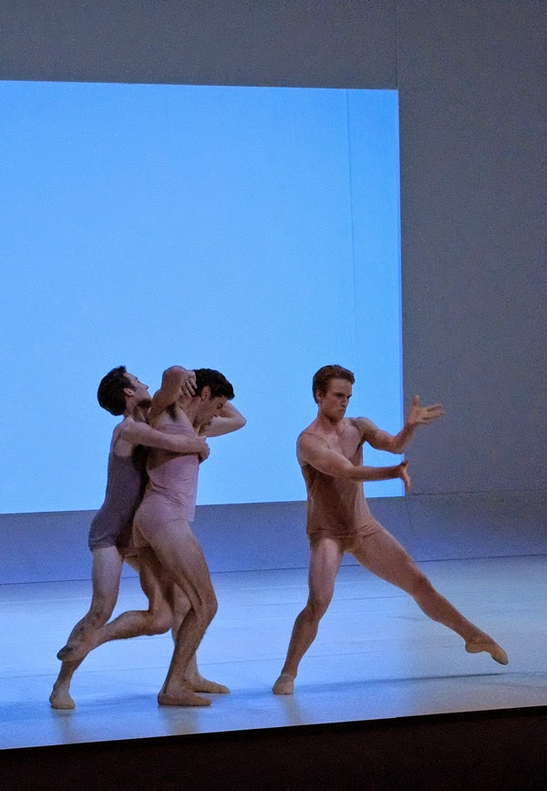 Men struggling and fighting dancing - The Australian Ballet - CHROMA - Preview & Dress Rehearsal - Photographed by Kent Johnson.