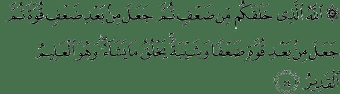 Surat Ar Rum Ayat 54