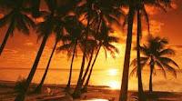 Mar, palmeras y arena