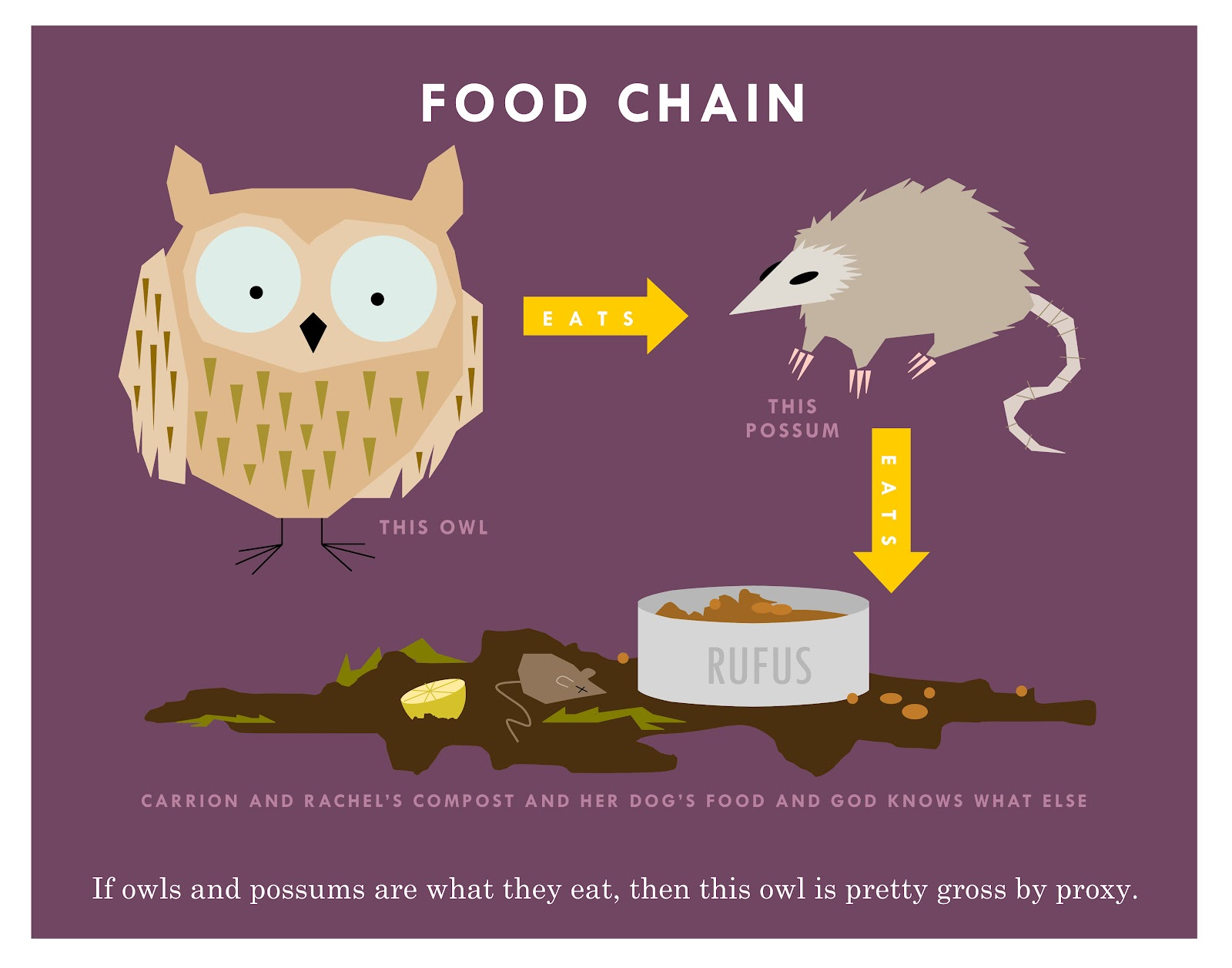This Owl Food Chain The Transitive Property