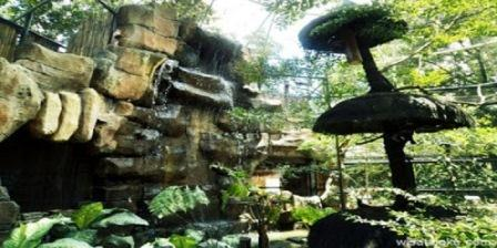 Kebun Binatang Gembiraloka kebun binatang gembira loka kebun binatang gembira loka berada di kota kebun binatang gembira loka terletak kebun binatang gembira loka yogya